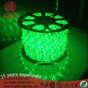 Indoor and Outdoor High Quality LED Round Two Wire Rope Light for Decoration Lighting pictures & photos