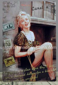 High Quality 20*30cm Vintage Tin Sign pictures & photos