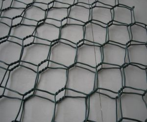 PVC Hexagonal Wire Mesh/ Chicken Wire Mesh pictures & photos