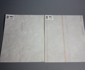 Electrical Insulation Material Nmn (H Class) Insulation Paper pictures & photos