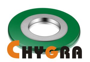 Spiral Wound Gasket Spw Gasket pictures & photos