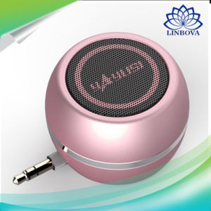 USB 3.5mm Aux Professional Active Mini Portable Speaker for Smartphones pictures & photos