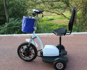 Hot Selling 350W 36V Zappy 3 Wheel Electric Scooter Tricycle with Ce pictures & photos