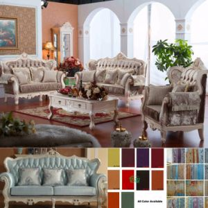 Sofa Set with Wooden Sofa Chair for Home Furniture (D955)
