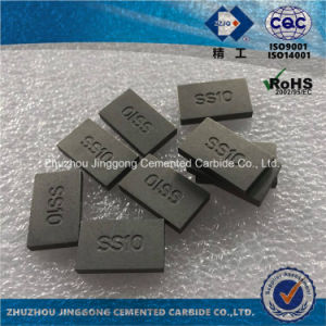 Zzjg High Quality Tungsten Carbide Tips Ss10 pictures & photos