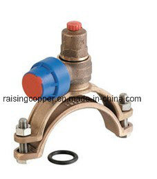 Bronze Self-Tapping Ferrule Strap with BSPT Outlet pictures & photos