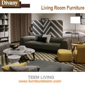 Teem Leather Design Furniture Hotel Sofa pictures & photos