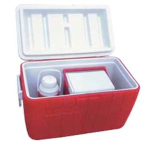 High Quality Competitive Price Plastic Cooler Box pictures & photos