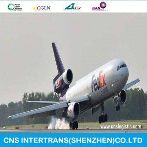 International Express/DHL/TNT/UPS/EMS/FedEx