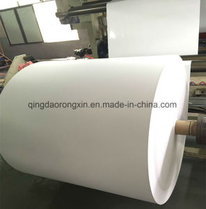 Single Side PE Coated Paper for Cola Cup pictures & photos