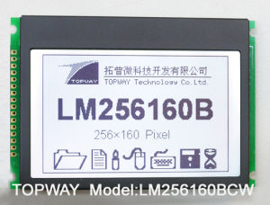 256X160 Graphic LCD Display COB Type LCD Module (LM256160) pictures & photos