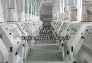 300 TON Flour Mill pictures & photos