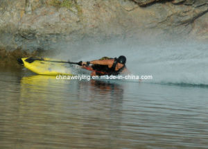 Surfing Board pictures & photos