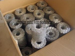 Hot DIP Galvanized Coil Mesh, Also Called Brick Mesh pictures & photos