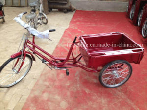 Economic Luggage Cargo Three Wheel Trike (FP-TRCY041) pictures & photos