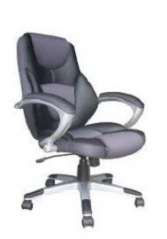 Office Chair (10793-01)