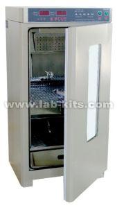 Electric Heating Incubator