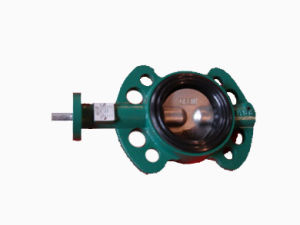 BV3000W Wafer Type Butterfly Valve