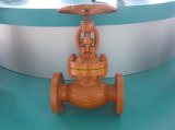 Flange Globe Valve with Painting pictures & photos