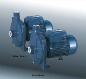 Centrifugal Pump (DCM 130-1) pictures & photos