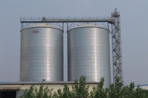 Flat Bottom Silo for Grain Depot