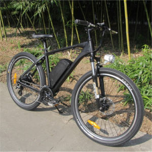 26inch Mountain Electric Bike/ Electric Bicycle/ Ebike pictures & photos