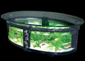 Glass Tea Table Aquariums/Decorative Fish Tank (1.1m*0.5m*0.53m)