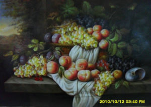 Still Life & Fruit -006