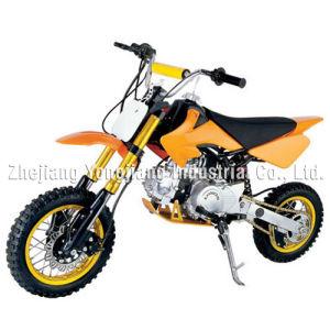 Luxury 110CC-125CC PIT BIKE / Dirt Bike (BKGS-F04AKU)