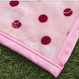 Super Soft Printed Flannel Blanket Sr-B170213-20 Printed Coral Fleece Blanket pictures & photos