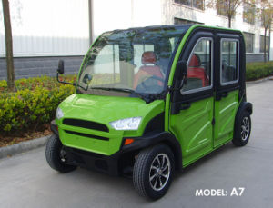 Electric Vehicle (2 ~5 Passengers)