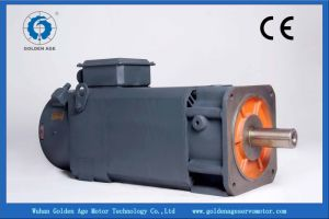 AC Spindle Motor (30kw)