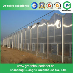 Glass/ Polycarbonate/ Plastic Film Greenhouse for Sale pictures & photos