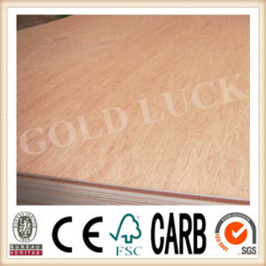 Bintangor/ Okoume Commercial Plywood (GOLD LUCK) pictures & photos