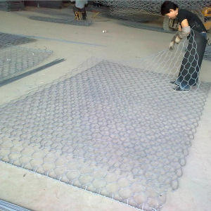 China Wholesale PVC Coated Galvanized Hexagonal Wire Mesh pictures & photos
