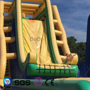 Cocowater Design Inflatable Big Slide for Outside Amusement Park LG9091