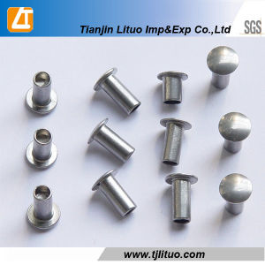 Galvanized Annular Ring Shank or Twist Shank Coil Nails pictures & photos