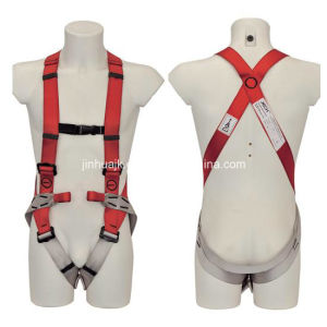 Full Body Harness (JE105001) pictures & photos