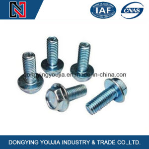 Fastener Manufacturerr Stainless Steel Hex Head Bolt with Flange pictures & photos