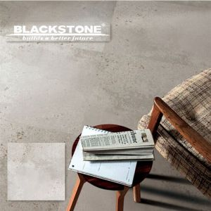 Moon Valley Series Rustic Floor Tile with Matt Surface (42656) pictures & photos