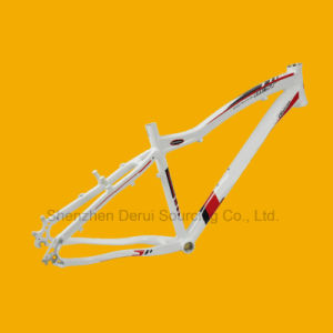 Bike Frame, Bicycle Frame for Sale Tim-FM905 pictures & photos