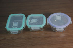 Borosilicate Glass Food Container (AYYH110)