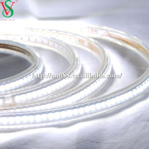SMD5050 White Strip Rope Light pictures & photos