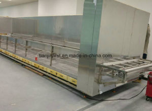 Factory Supply Tunnel Quick Freezer IQF Frozen Pizza or Dough for Chain pictures & photos