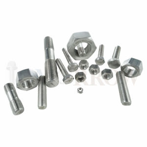 Hot Selling High Quality Exotic Alloy Incoloy 800ht Hex Bolt/ Hex Nut/ Allen Bolt/ Stud/ Plain Washer pictures & photos