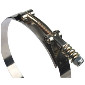 Two Bolts Hose Clamp pictures & photos