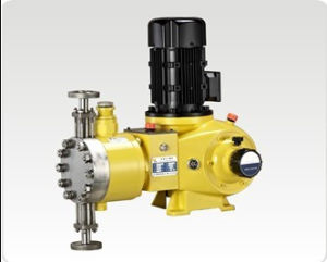 Double Heads Diaphragm Chemical Dosing Pump (GB) pictures & photos