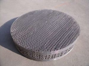 304 Wire Mesh Tower Structured Packing pictures & photos