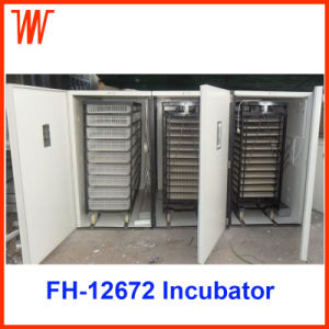 Automatic Goose Egg Incubator for Sale pictures & photos
