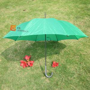 Plain Fabric Green Umbrella with Curve Handle (YSS0007) pictures & photos
